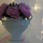 ваза с живыми астрами